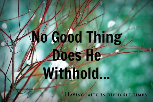 no good thing does he withhold.jpg