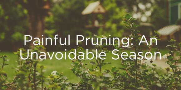 160412-pruning
